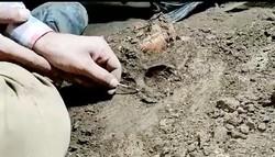 کشف اسکلت ۱۲ هزار ساله در پی کاوش باستان شناسان در غار هوتو مازندران